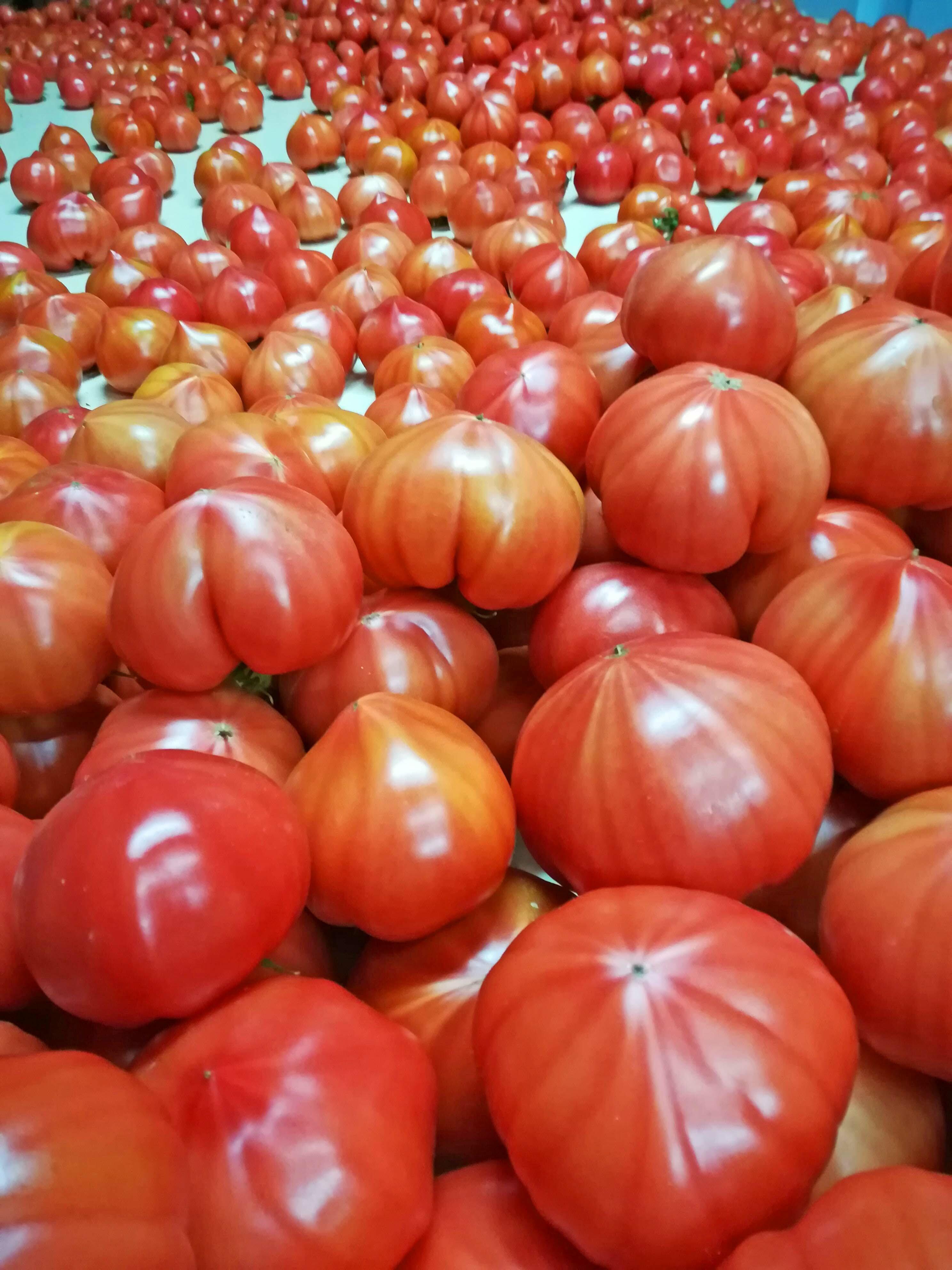 トマトジュース大瓶2本セット