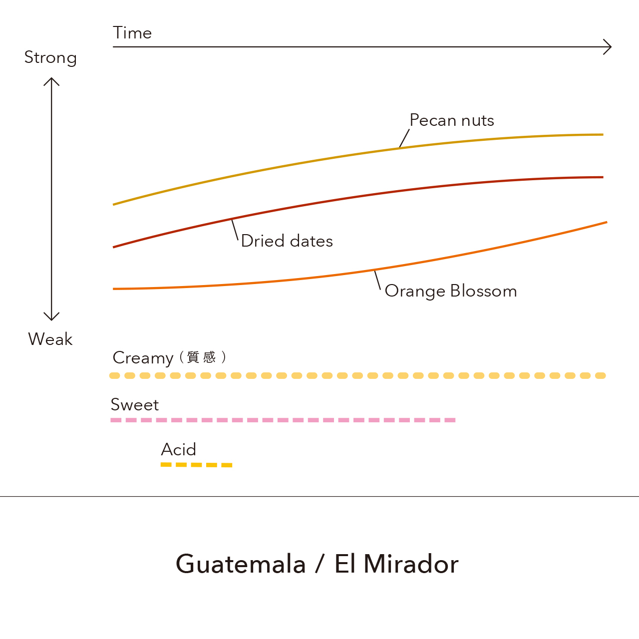 Guatemala - El Mirador / 150g