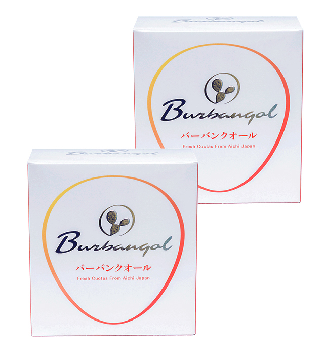 burbanqol(バーバンクオール)×2