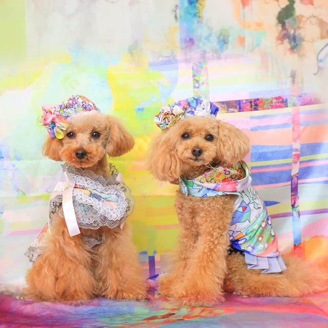 jibun-fuku DOG 【パーカードレス】 DOGBH2018194