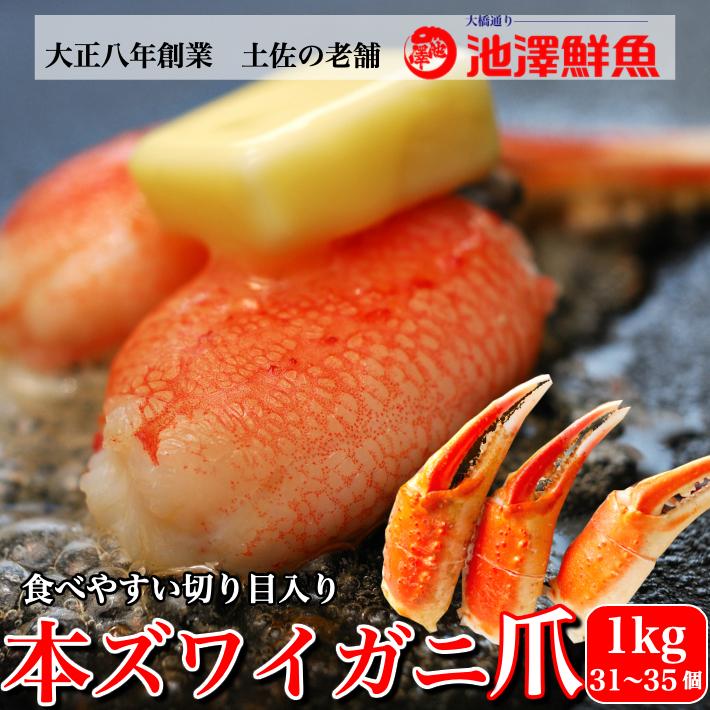 本ズワイガニ かに爪 1kg(500g×2) 切れ目入 ボイルずわい 蟹爪 約31-35個入り 海鮮 グルメ お取り寄せ お誕生日 ギフト 送料無料