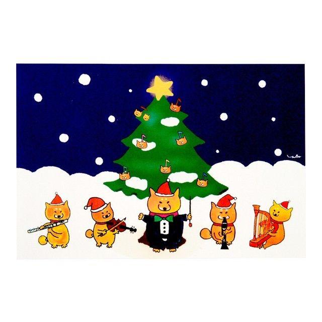 柴犬ラク ポストカード(クリスマス)