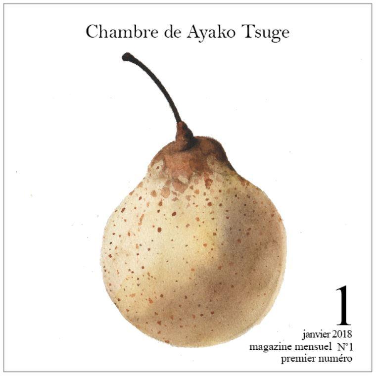 【受注生産】バックナンバーまとめて12冊 Chambre de Ayako Tsuge  創刊号から12月号までまとめてセット