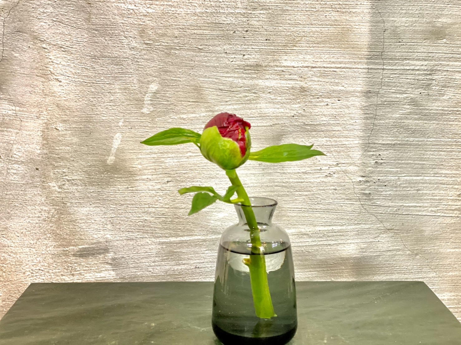 【父の日&皆さんへ】おまかせ 初めての花瓶とお花(芍薬)