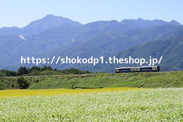 キハE200系・小海線風景_DSC1286