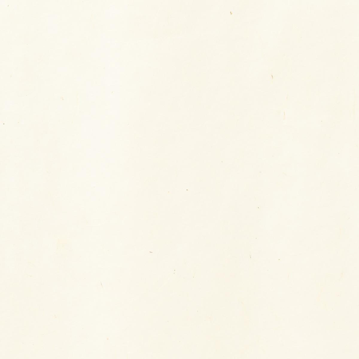 阿波 雁皮紙 HM19 95×190cm
