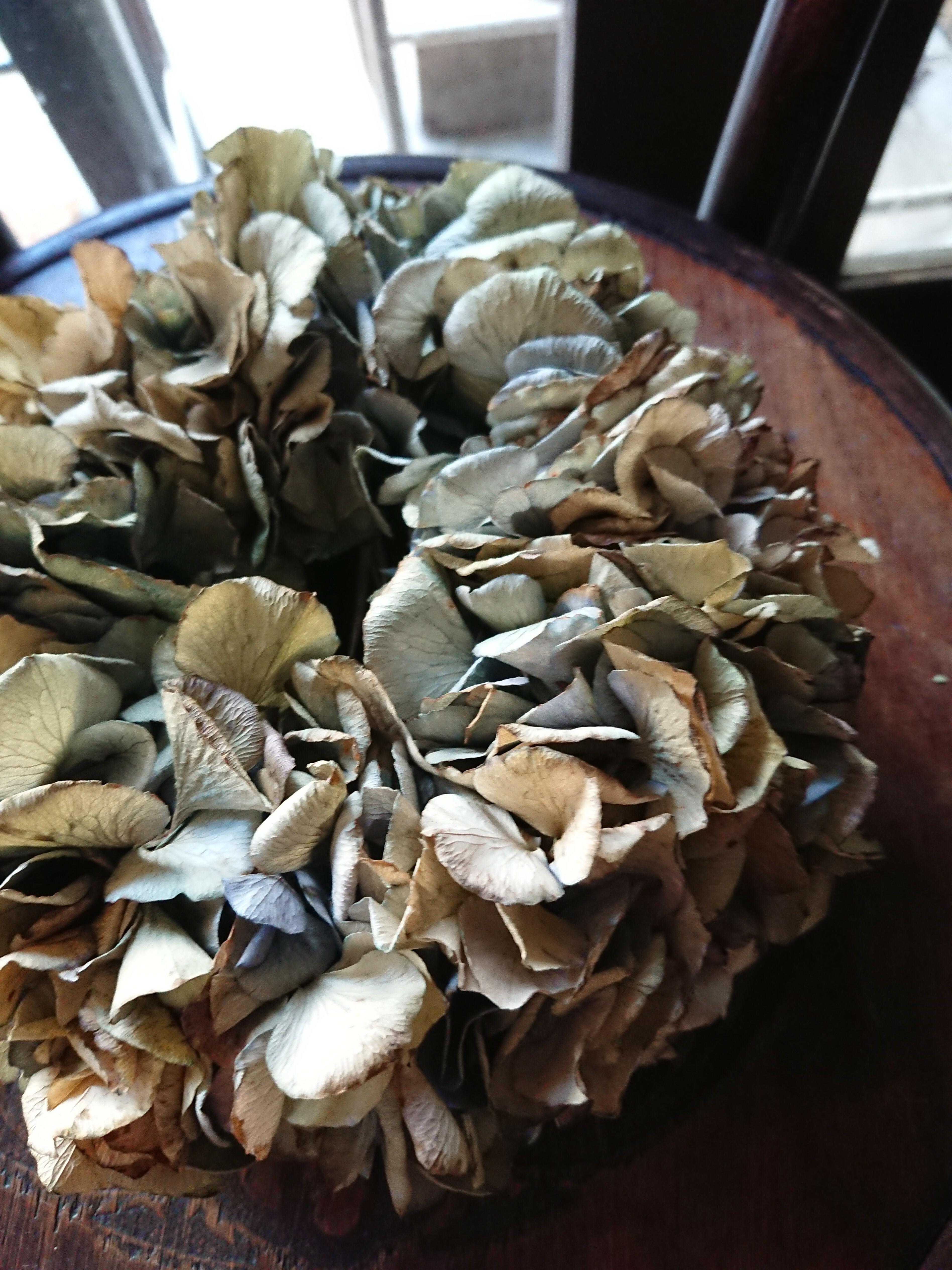 Dried  hyndrangia  wreath(アジサイのドライリース)