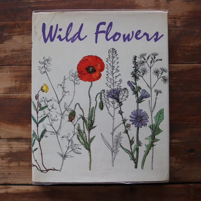 Wild Flowers / J.G Barton /  K. Svolinsky