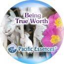 ビーイングトゥルーワース[Being True Worth]『本当の自分を生きる』