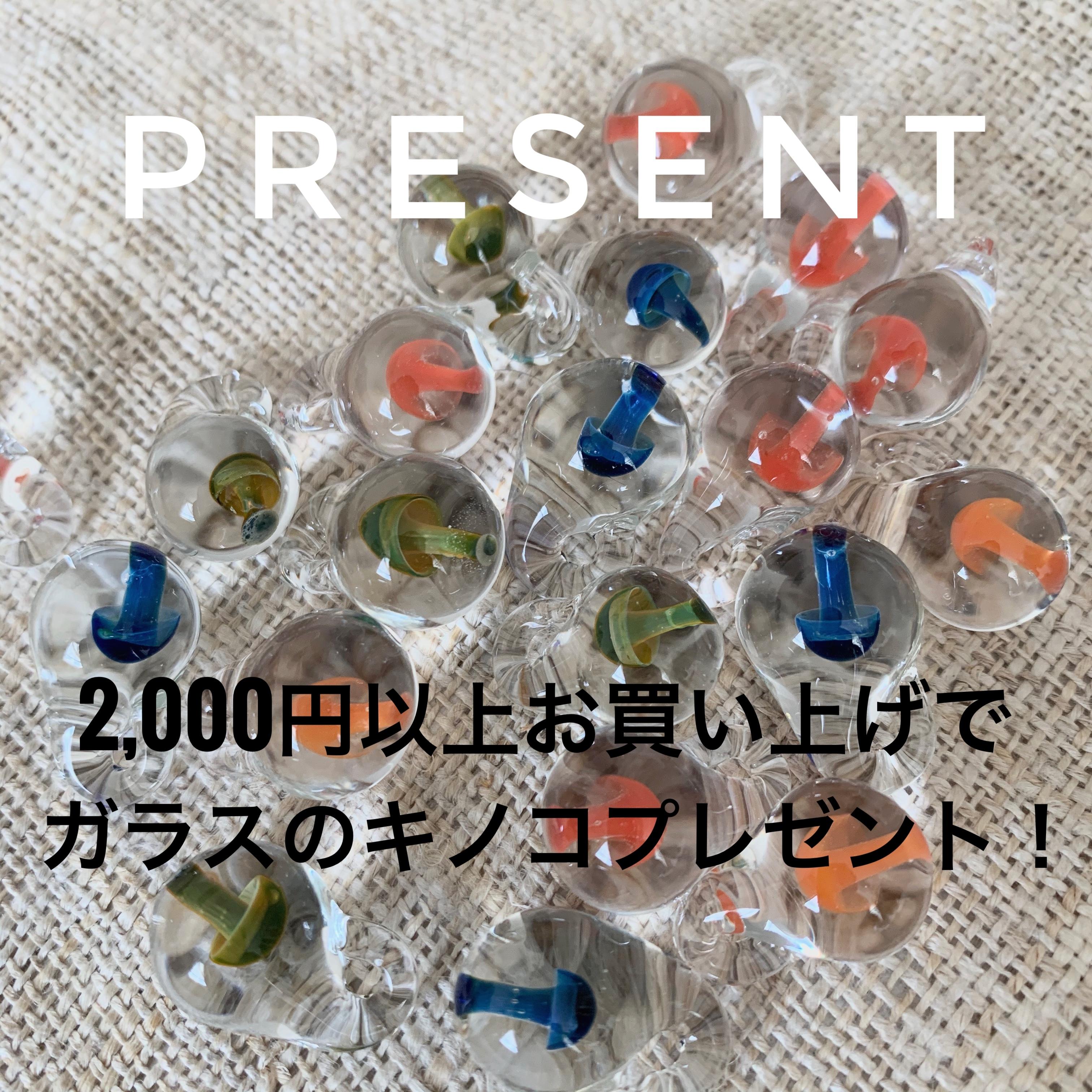 ☆PRESENTその2☆ 2,000円以上お買い上げの方先着20名様にプレゼント!