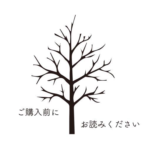 ご購入前にお読みください 12/1更新