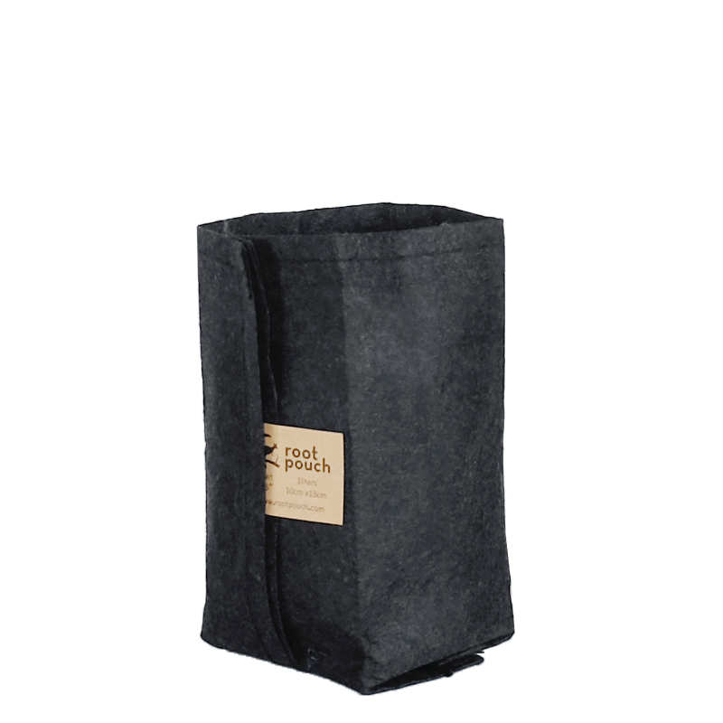Root Pouch - 1QT Black [10枚セット]
