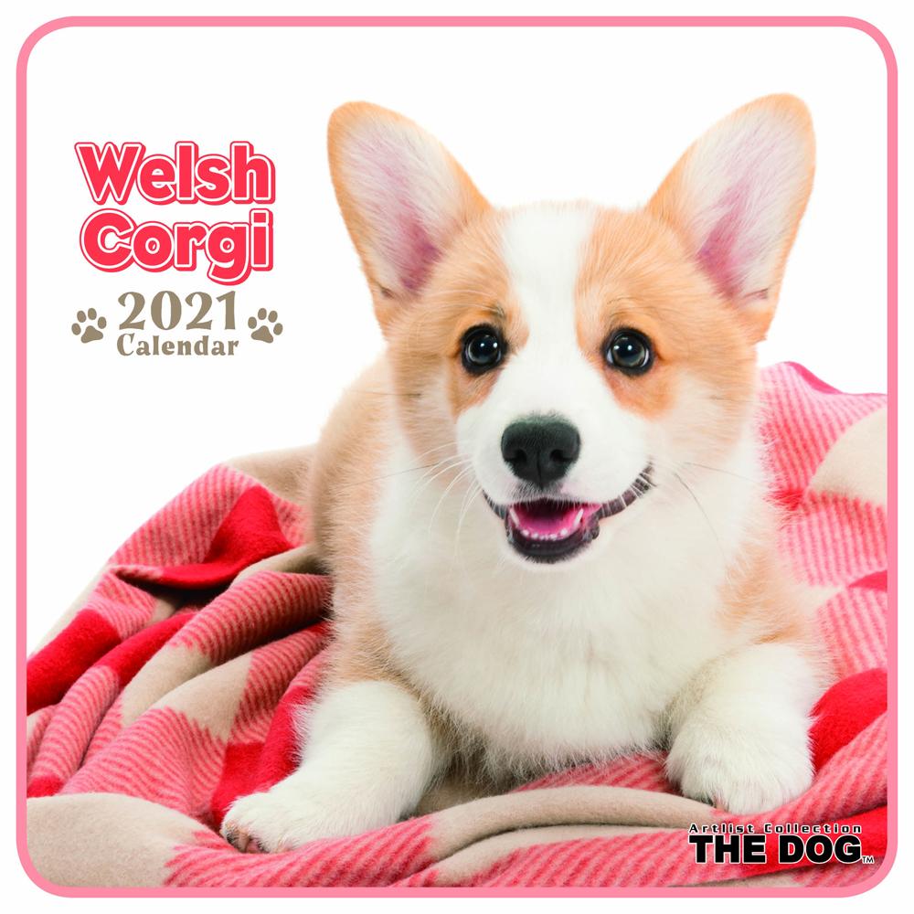 2021年 THE DOGミニカレンダー【ミニサイズ】 ウェルシュ・コーギー(ミニ)