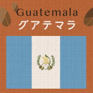 グアテマラ アンティグア・アゾテア農園(小袋200g)