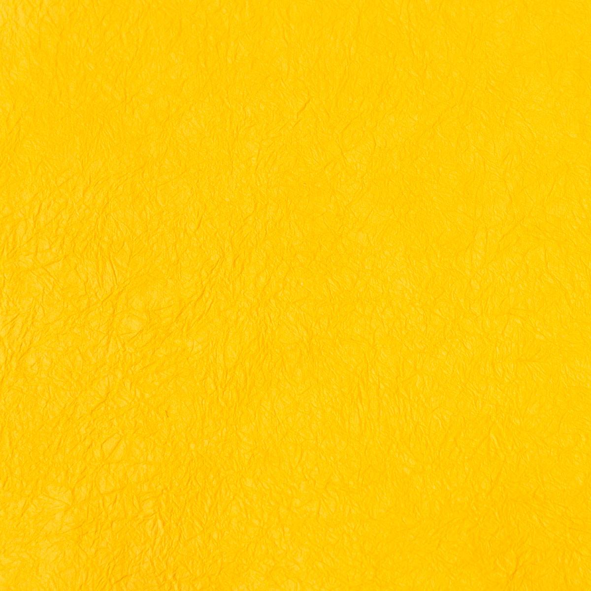 王朝のそめいろ 厚口 21番 黄支子