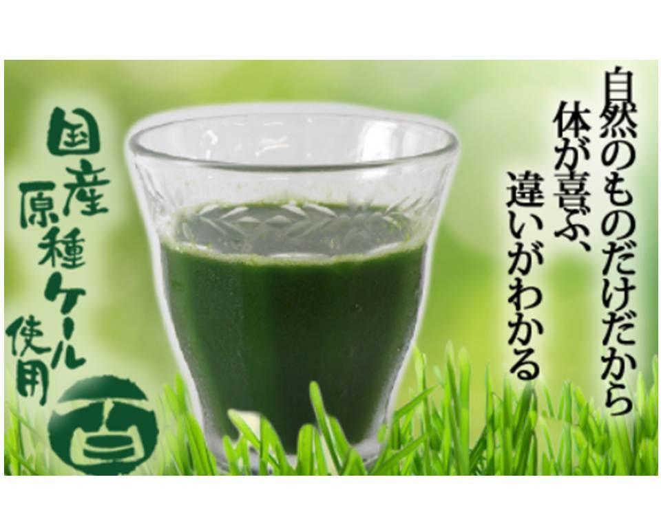 冷凍すり搾り製法の青汁百(100g1袋) - 画像1