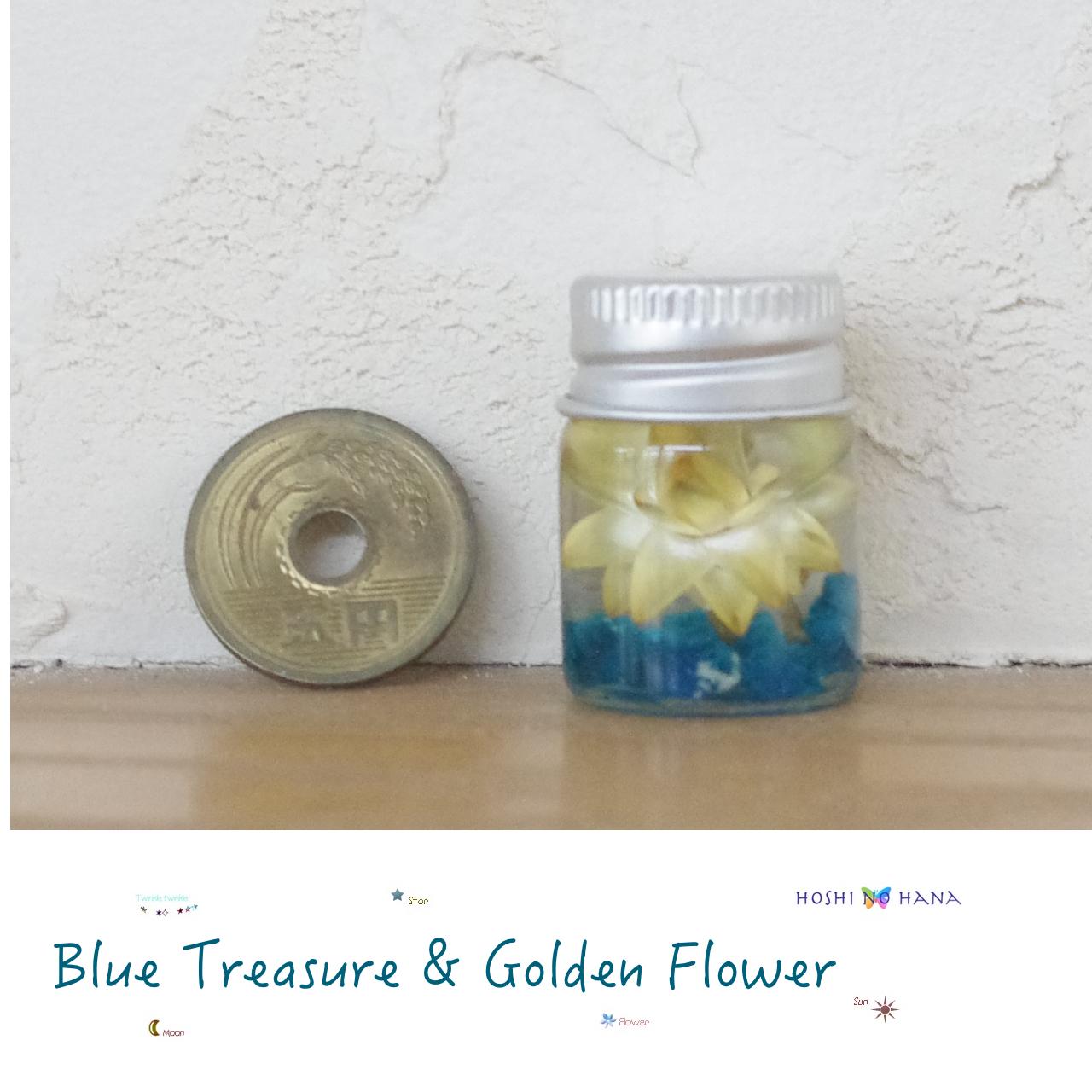 【Petit Vol.1】パワーストーンハーバリウム *青い至宝カバンサイトと黄金の花ヘリクリサム*