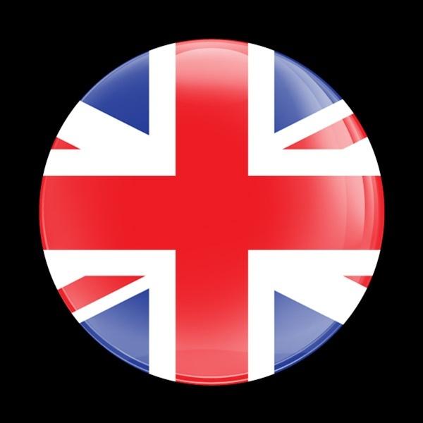 ゴーバッジ(ドーム)(CD0222 - FLAG UK) - 画像1