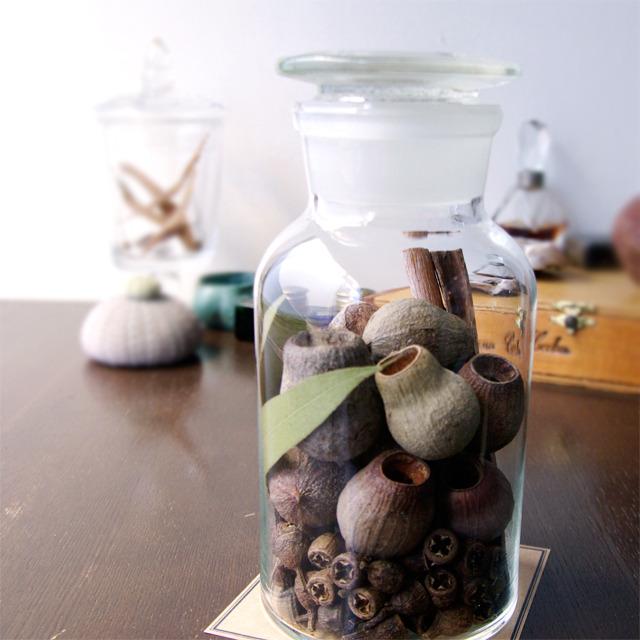 """Botanical Bottle """"Eucalyptus"""""""