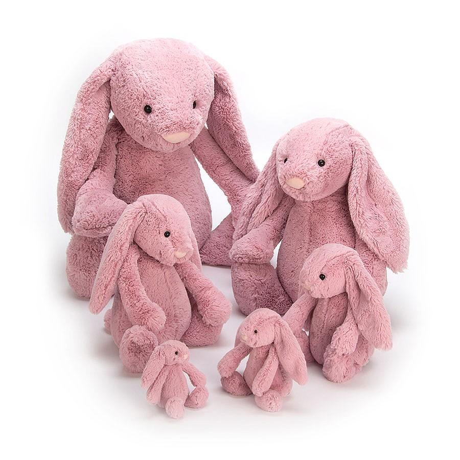 Bashful Tulip Pink Bunny Baby_BAB6BTP