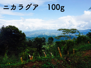 ニカラグア ラ・ウエジャ イエローパカマラ 浅煎り 100g