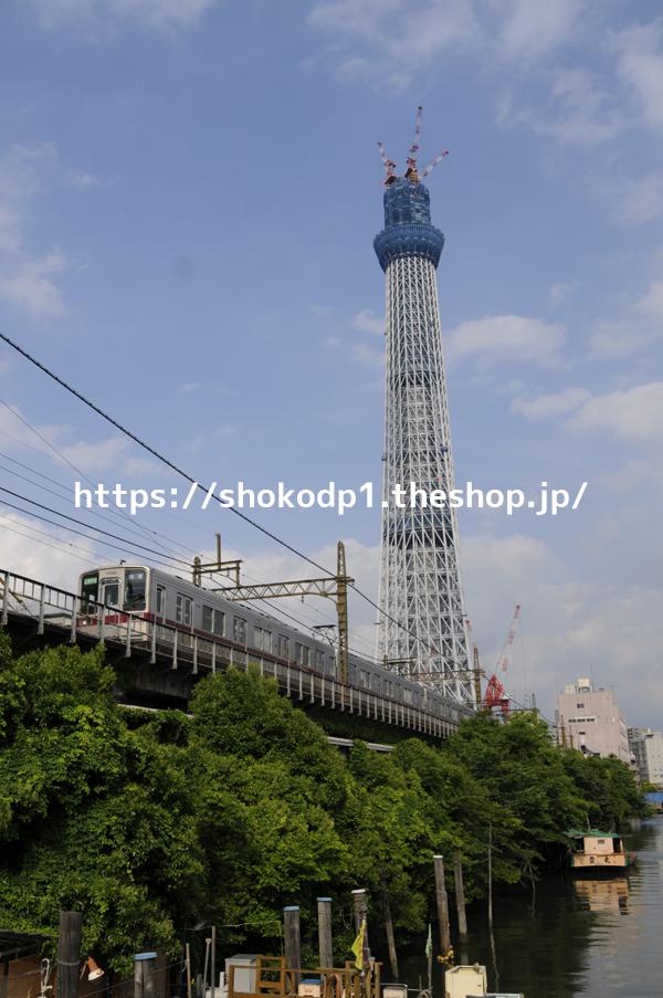東武10030系と東京スカイツリー_dsc7286