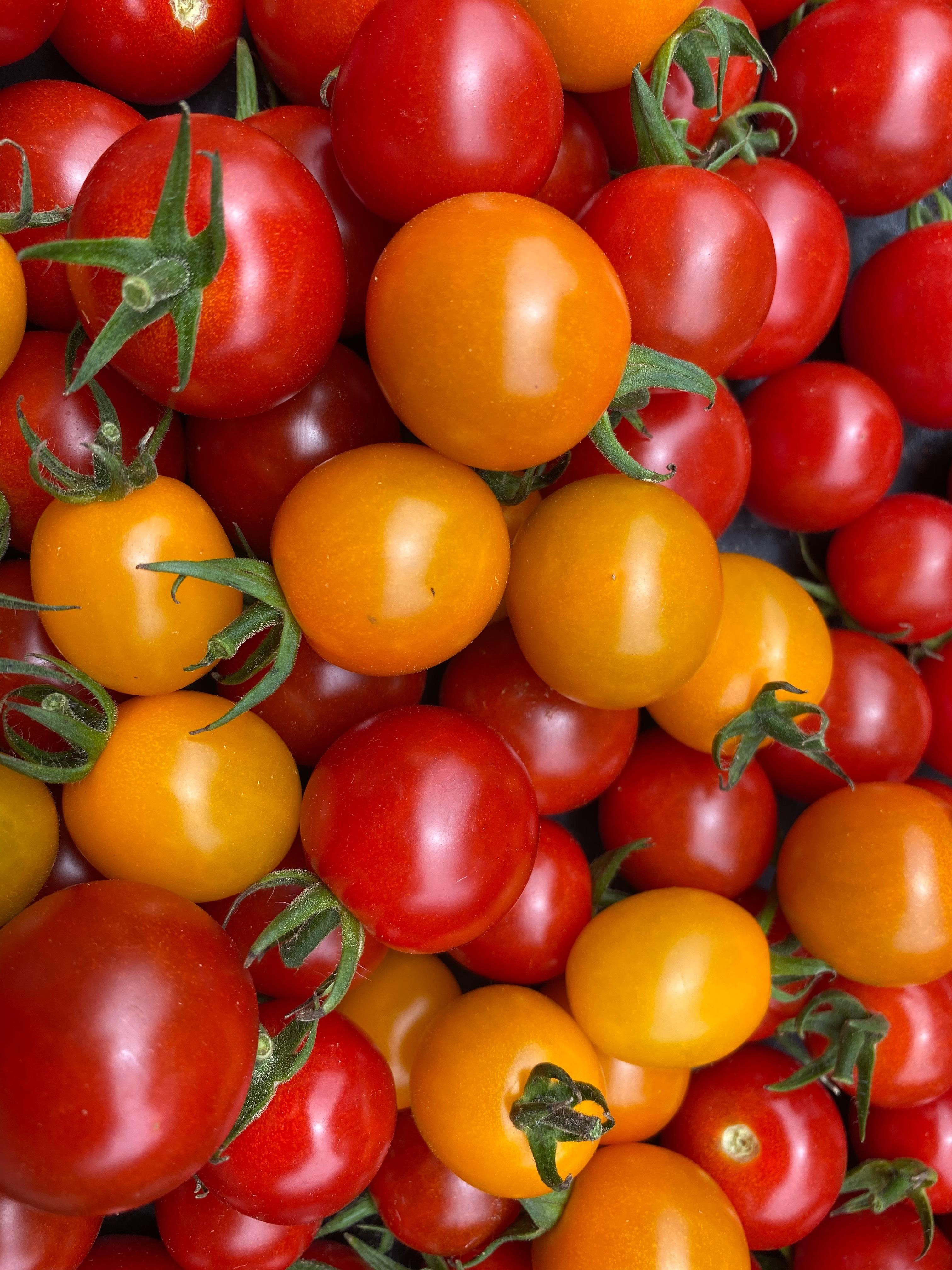 カラフルミニトマト 180g