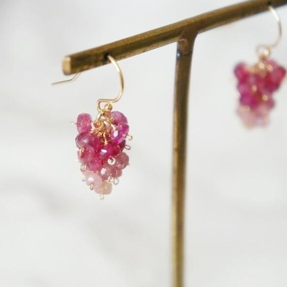 Graduation Ruby   Grape Pierced Earring  ルビーのぶどうピアス