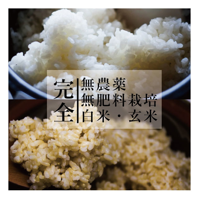 【送料無料】完全無農薬・無肥料栽培 白米・玄米 お試しパック便(各3合×2パック)
