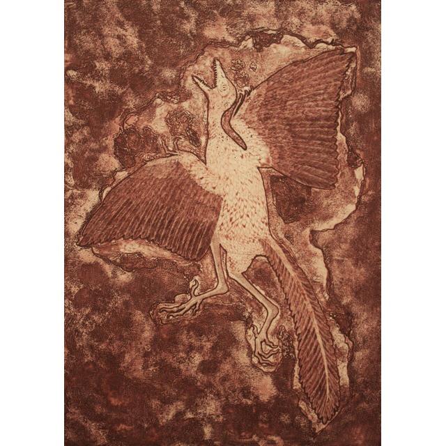 松下大一 alchaeopteryx