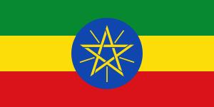 エチオピア イルガチェフ G1 イルガチェフ地域 100g【焙煎後約83g】
