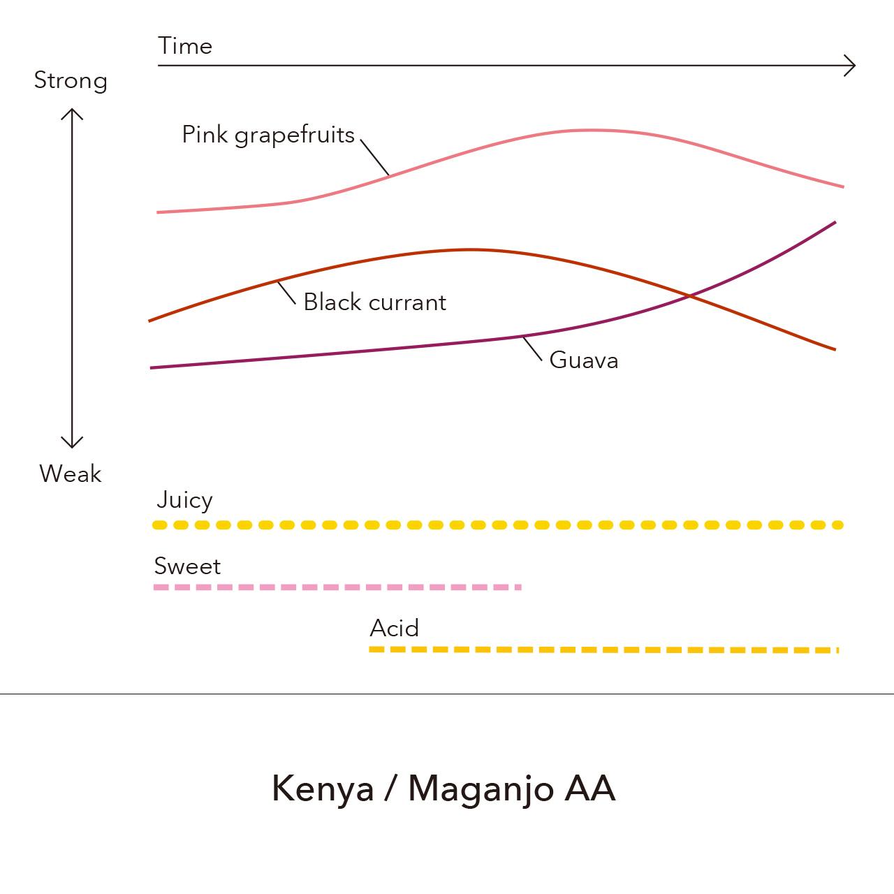 Kenya - Maganjo AA / 150g
