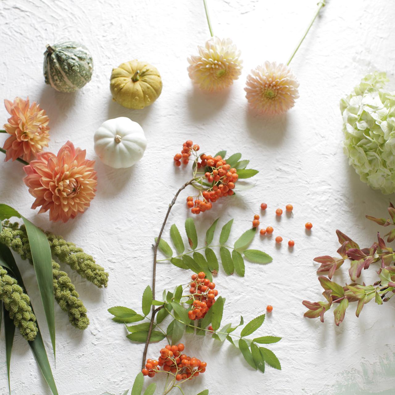 季節の花教材<秋>