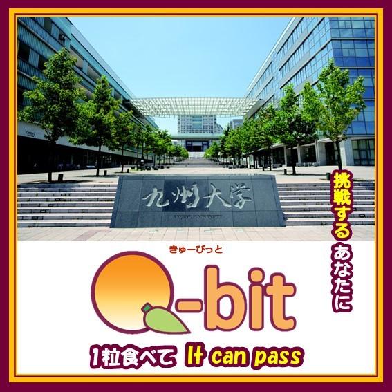 Q-bit(きゅーびっと) 九州大学