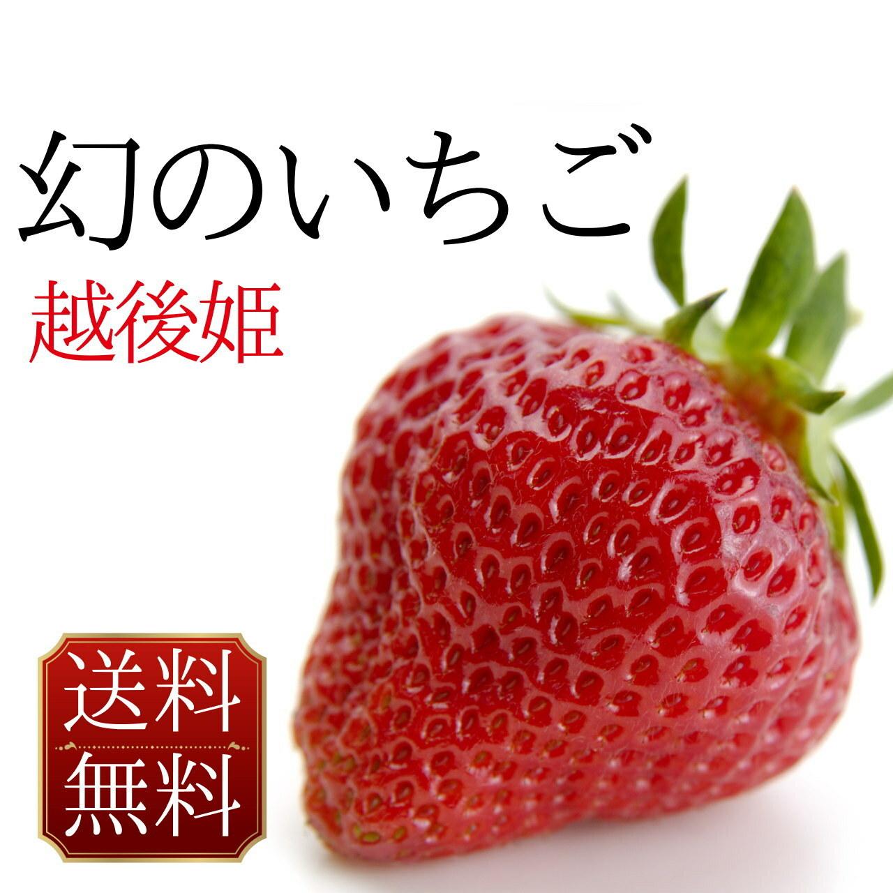 越後姫 旬のおいしいイチゴ 送料無料 400g ギフトボックス入り