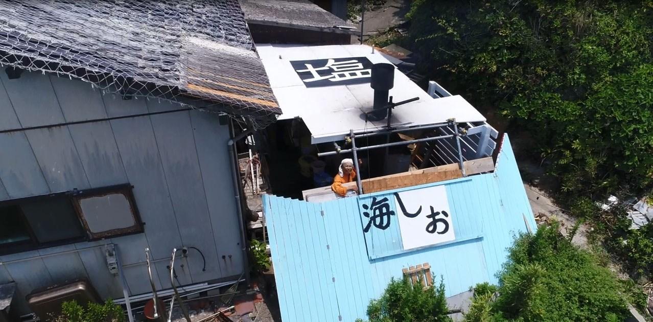 パルセイユ ソルティハミガキ 75g【tooth paste】