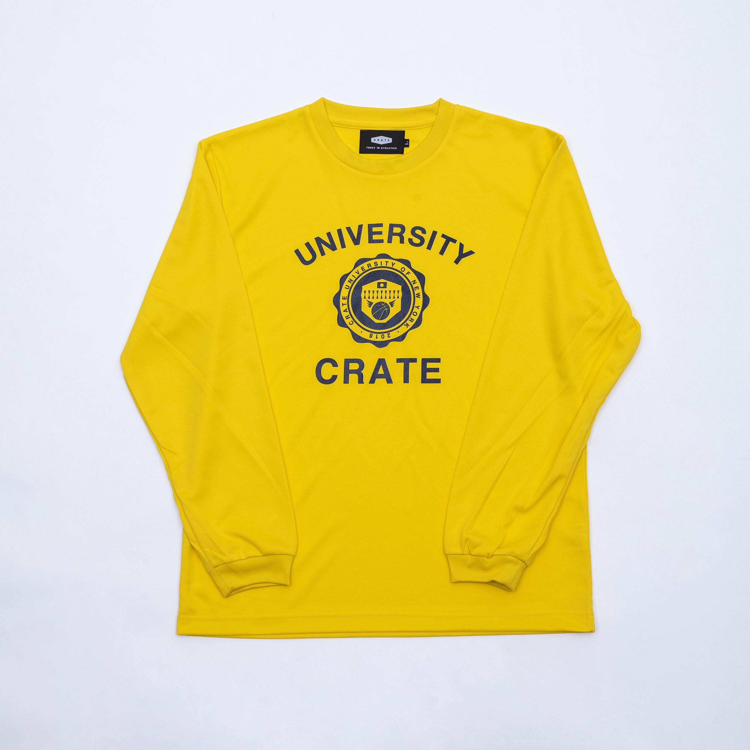 CrateUniversity Mesh L/S Tshirt YELLOW