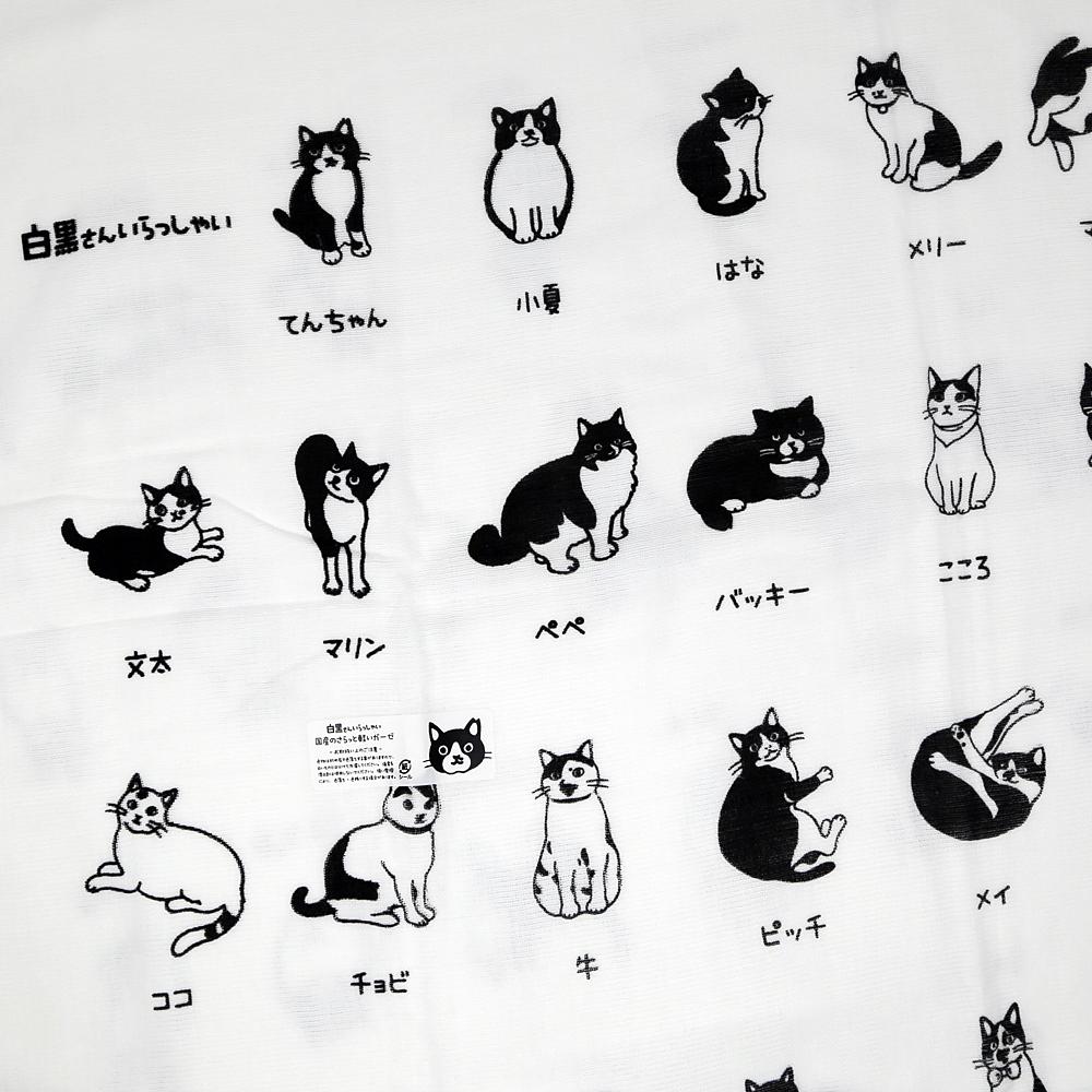 猫バスタオル(白黒さんいらっしゃい)