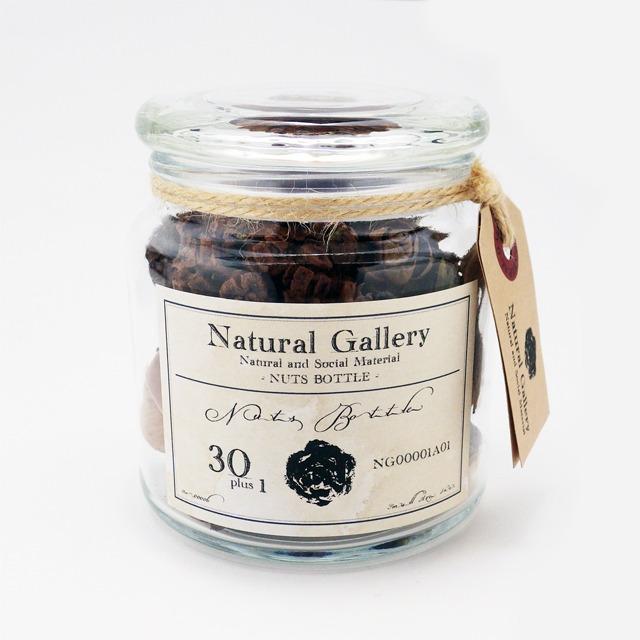 ナッツボトル・30種類の木の実の標本