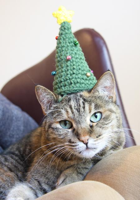 にゃんハット★クリスマスツリーの猫帽子