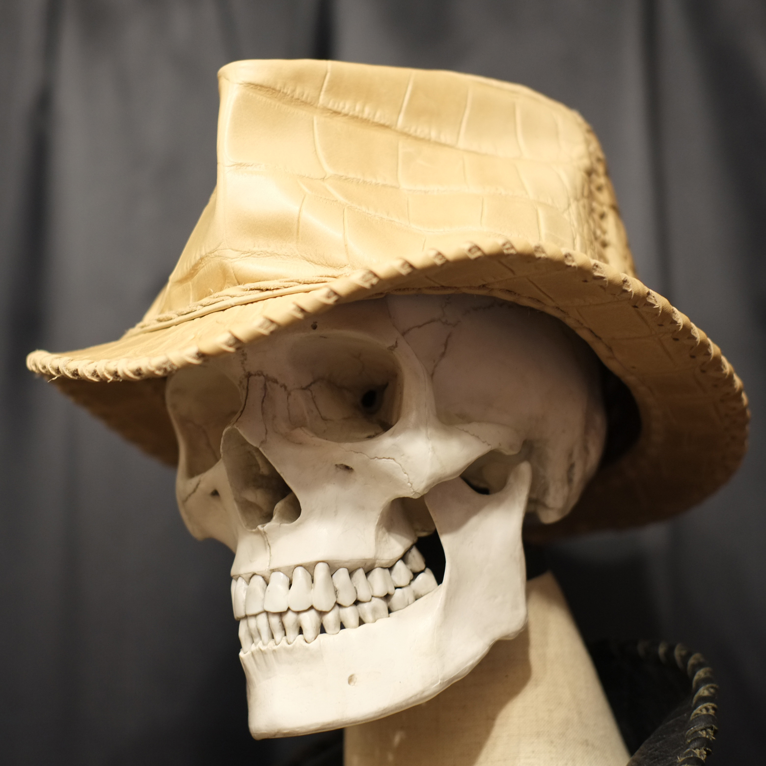 Wild Leather Hat クロコ・モルグ/M(約58cm)限定数1