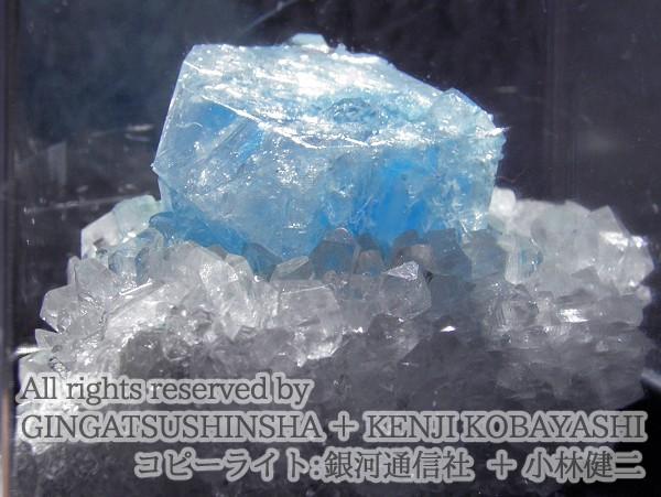 結晶育成キット - 湖水晶育成キット Tarap-to Crystal Kit - 銀河通信社
