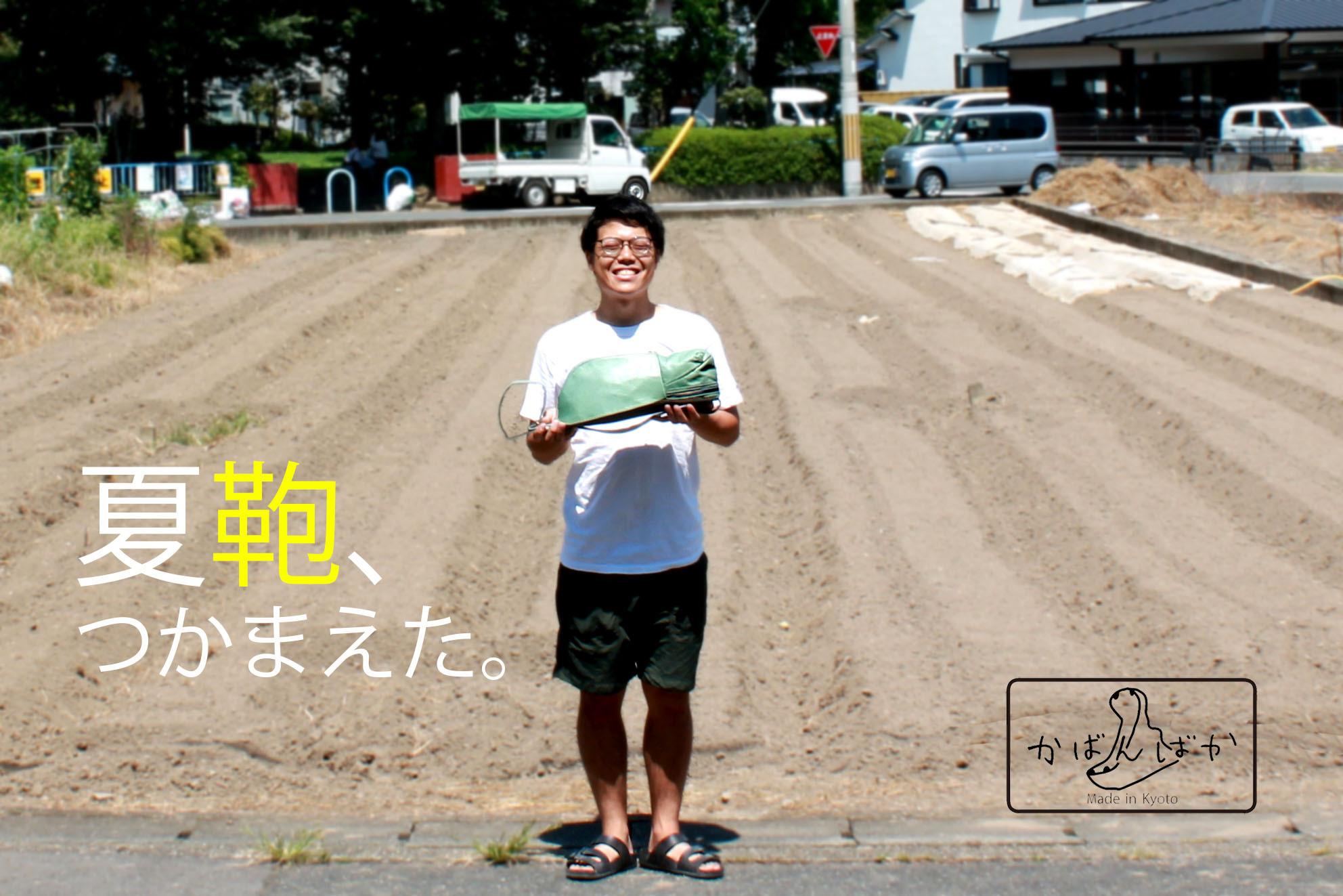 カメレオン【水色】