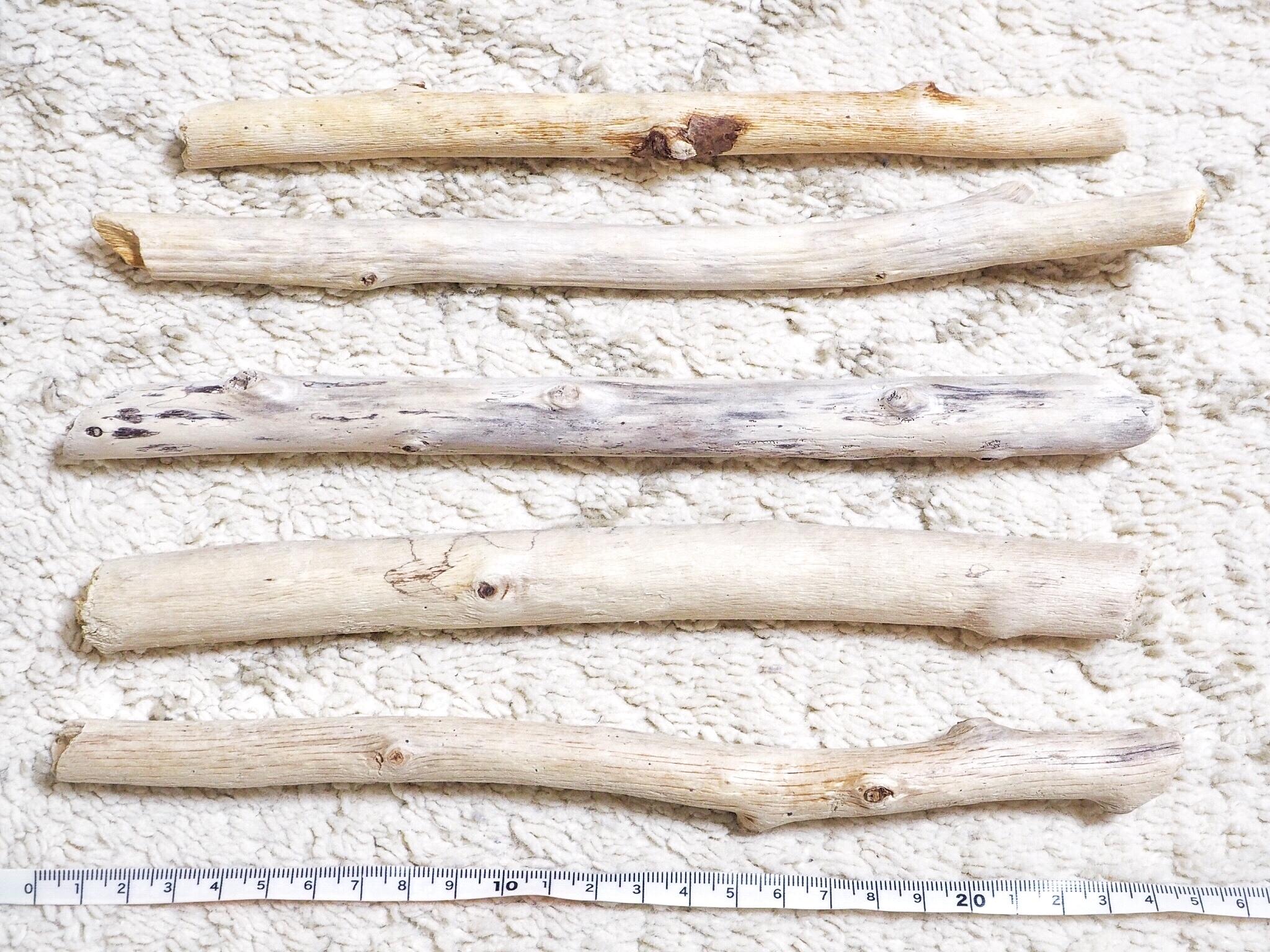 【20〜25cm】マクラメ用流木10本set