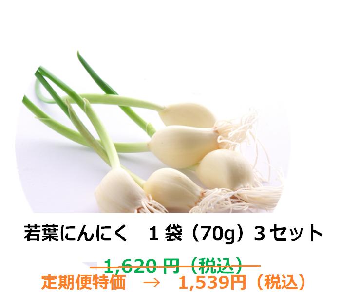 【1ヶ月定期便商品】若葉にんにく 1袋(70g)×3セット【埼玉県産】