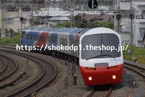 伊豆急2100系・アルファーリゾートと線路_DSC2714