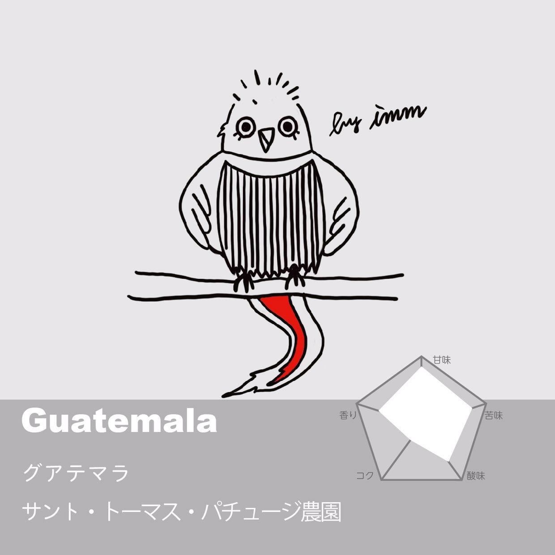 ガテマラ サント・トーマス・パチュージ農園 コーヒー豆 200g