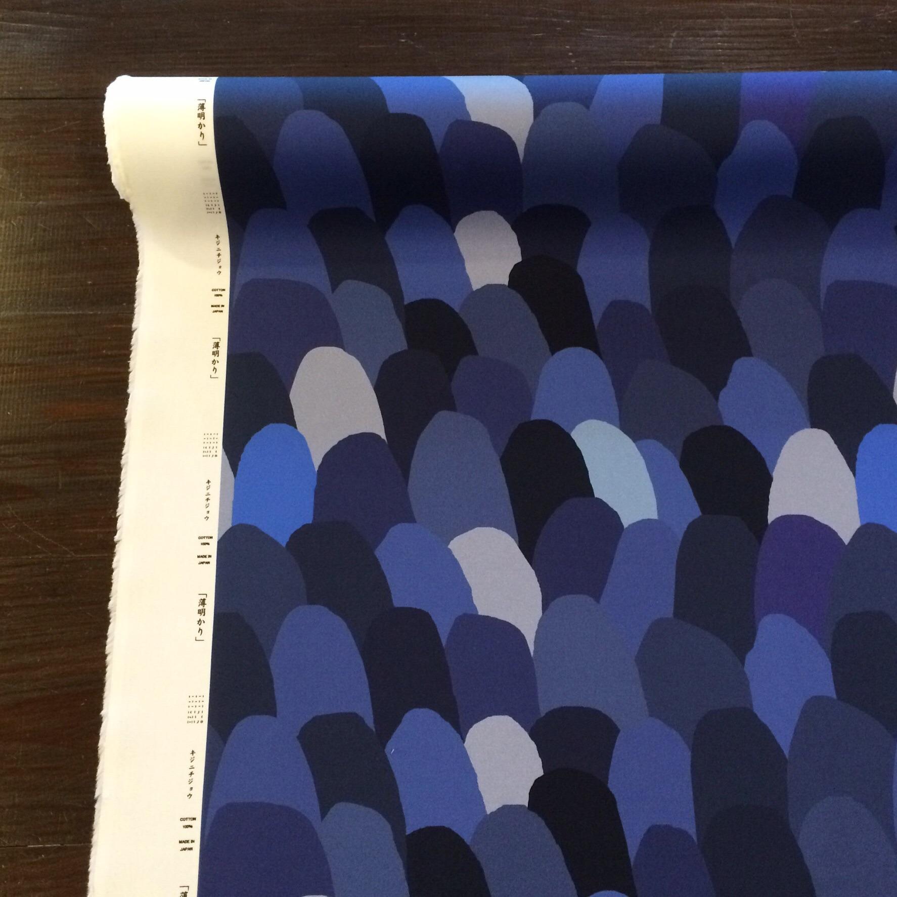 薄明かり(×50cm)