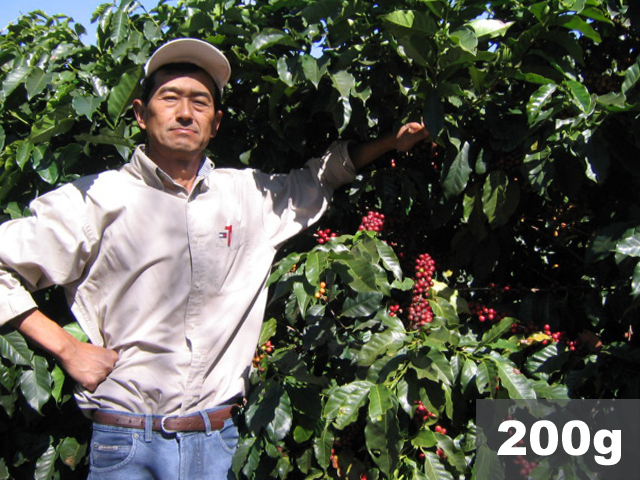 ブラジル   ファゼンダ・バウー トミオフクダ ナチュラル   コーヒー豆200g