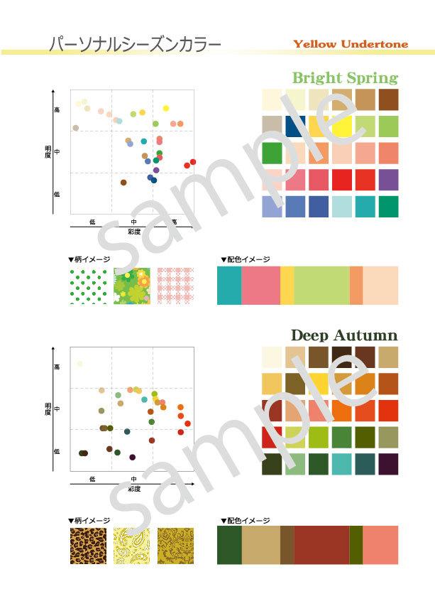ポスターTypeC(A4)色調配置図付 アンダートーン2枚セット